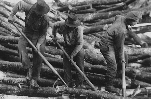1939 Canadian International Paper log-drivers trying to break a jam with their peaveys.