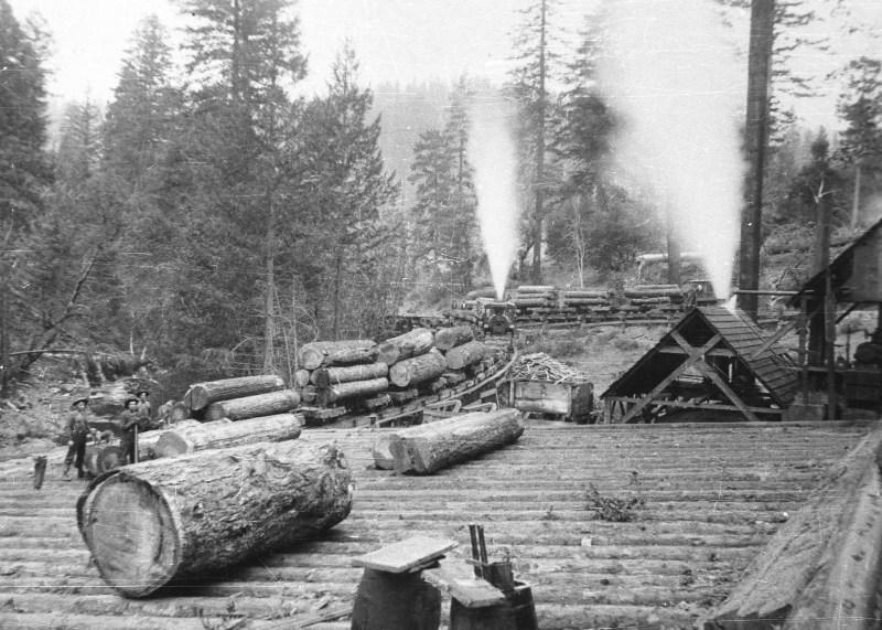 1900 Transfer from log chute to rail