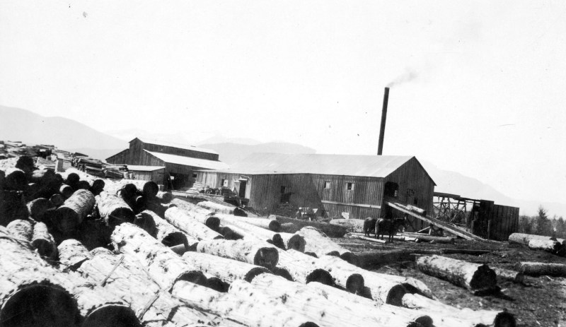 1925 Board of Trade trip - view of logging operation.