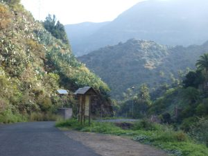 Los Loros; start of the day's walk