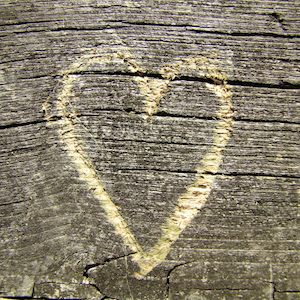 wooden-heart-donors