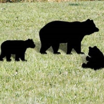 DT-131 Black Bear Family Pattern