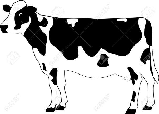 DT-141  Holstein Yard Cow Pattern