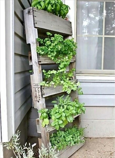 pallet planter vertical garden Garden Styling with Pallet Vertical Planter | Wooden