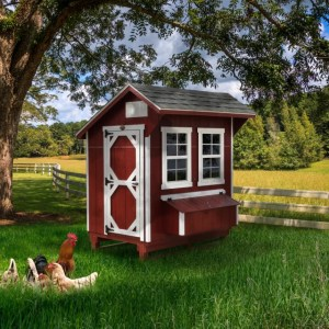 LakeSide Sheds Premier Collection - Chicken Coop