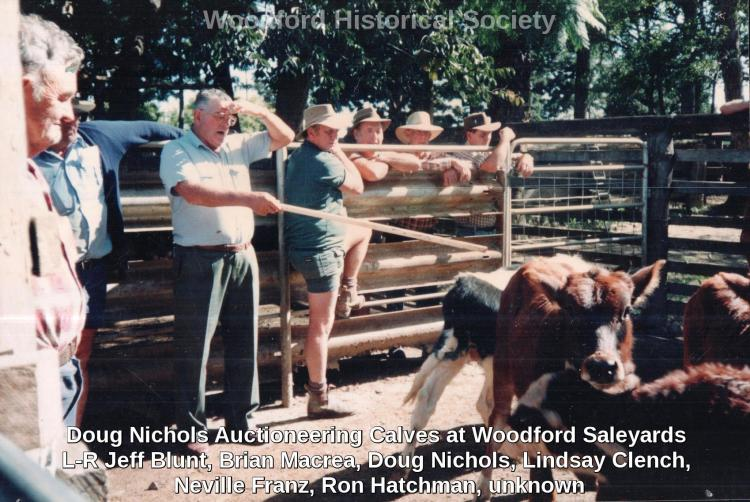 Doug Nichols Auctioneering Calves at Woodford Saleyards L-R Jeff Blunt, Brian Macrea, Doug Nichols, Lindsay Clench, Neville Franz, Ron Hatchman, unknown wm