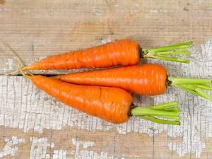 carrot-danvers-126
