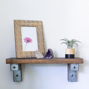black round air plant holder