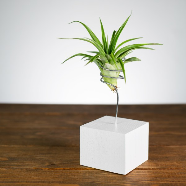 black and white air plant wire vase duo