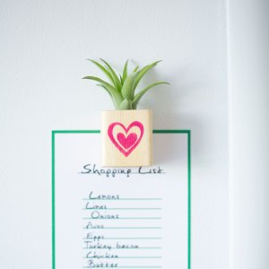 Heart Air Plant Magnet