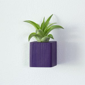 Purple Air Plant Magnet