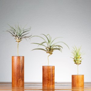 Set of 3 Gunstock Wire Vase