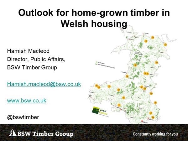 Hamish MacLeod - BSW Timber