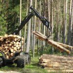 Future Forestry. What will Wales' forests look like in 2050?