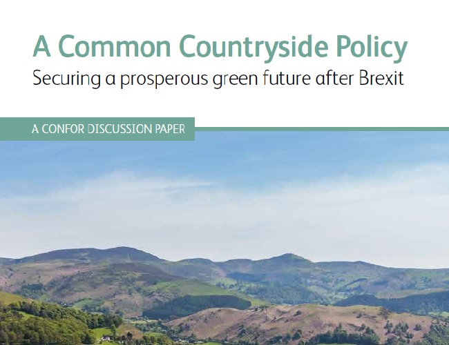 Front image for Confor discussion paper on a common countryside policy