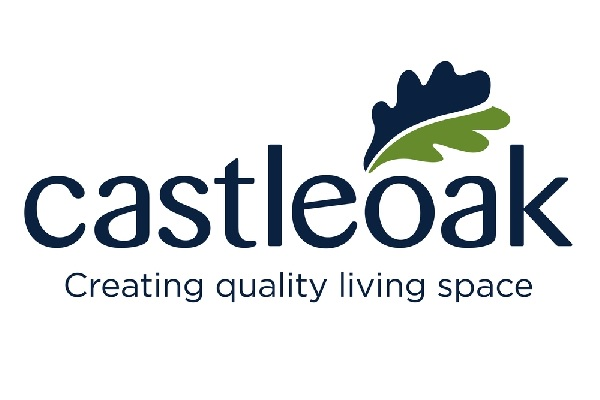 Logo for Castleoak. Text and oak leaf in blue and green above text