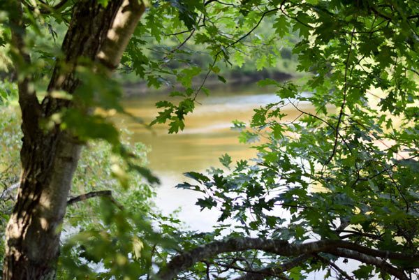 Camping on the Saco River