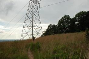 powerline cut