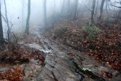09mckay_hollow_trail