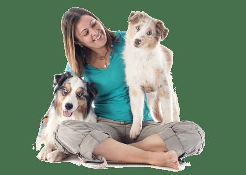 woodlands dog grooming