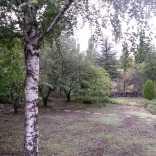 Woodlands Garden View