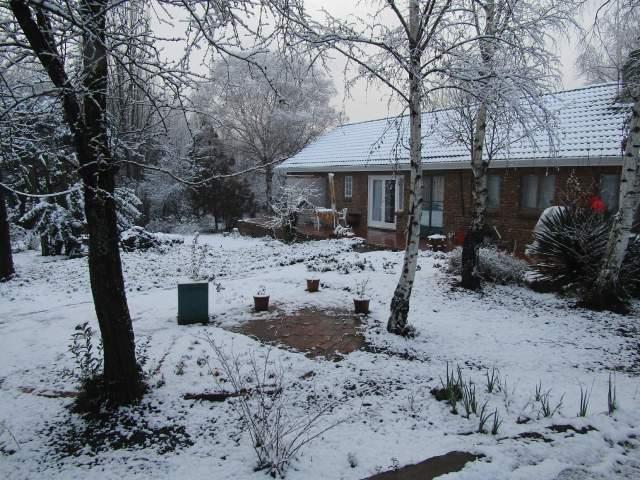 Woodlands Retreat Golden Maple Suite -30