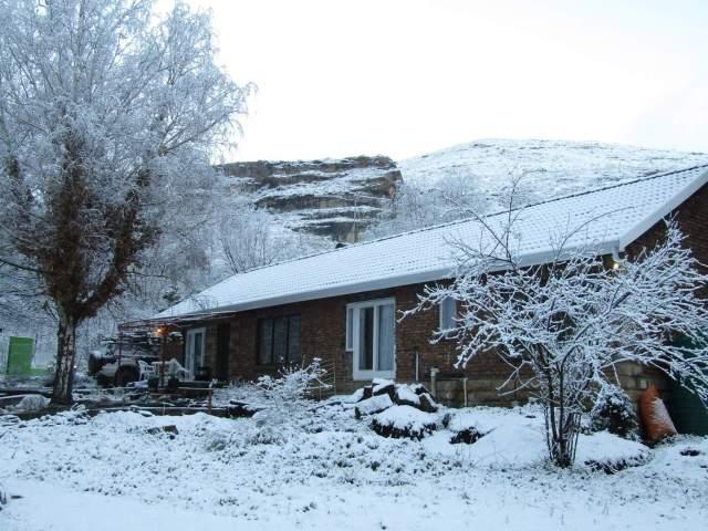 Woodlands Retreat Snowy Mountain -30
