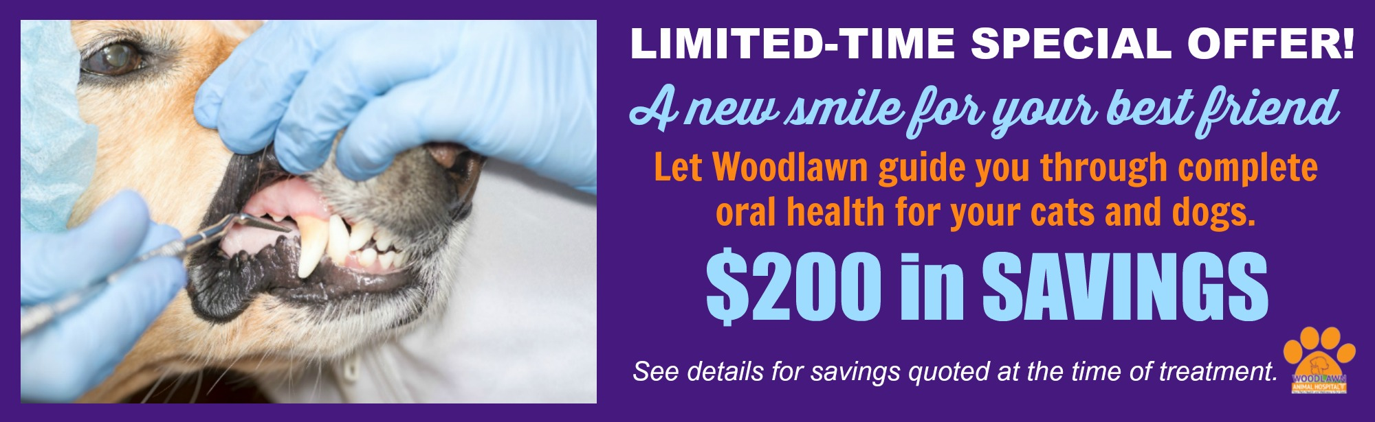 Special offers from Woodlawn for Dental services