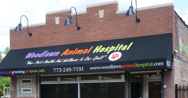 Visit Woodlawn Animal Hospital for expert veterinary services