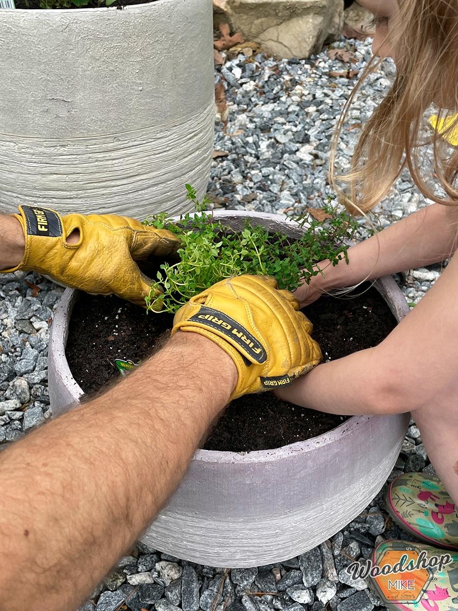 Planting herbs Outdoor Oasis