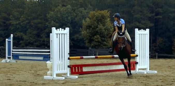 Horse training for jumps