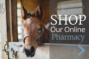 Shop our online pharmacy