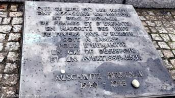 auschwitz (25)
