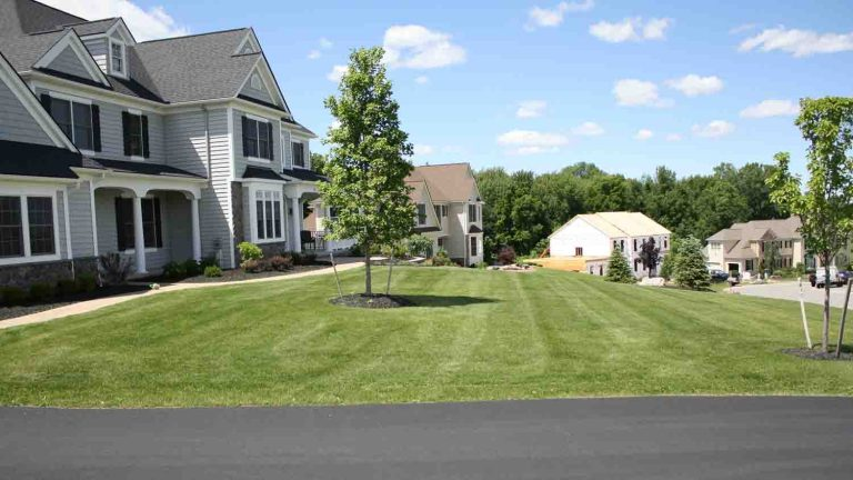 Landscape Renovation Before Rochester NY