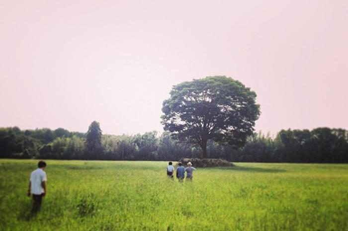 千葉県市原市のキャンプ場「一番星ヴィレッジ」の写真