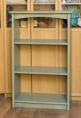 Book Shelves by Misha