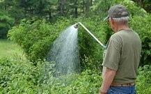 Best Garden Hose Wands