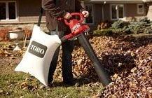Best Lawn Vacuums