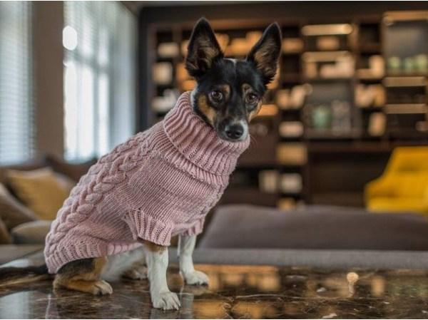 Surpreme Handknitted Dog Jumper - Pink Powder
