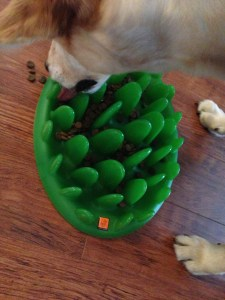 Green Feeder - interactive toys for dogs