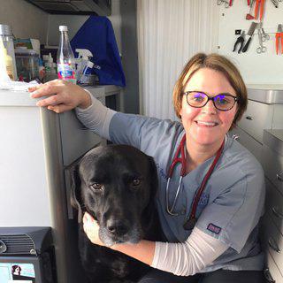 Dr. Erin Dexter : Veterinarian