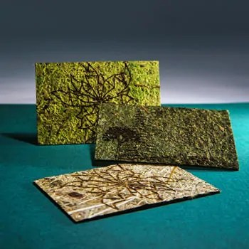Business cards made from moss