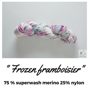 Présentation - Frozen framboisier