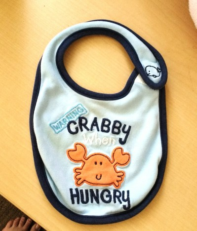 Perfectly appropriate bib