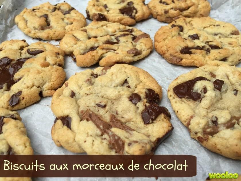 biscuit au morceaux de chocolat Wooloo