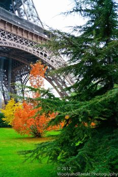 Autumn at the 'Tower'