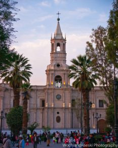 The Basilica Cathedral shows its color