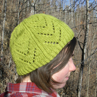 http://www.ravelry.com/patterns/library/dogwood-hat