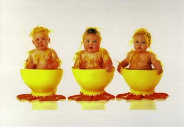 anne geddes babies5 Babies Come as Three Angels by Anne Geddes