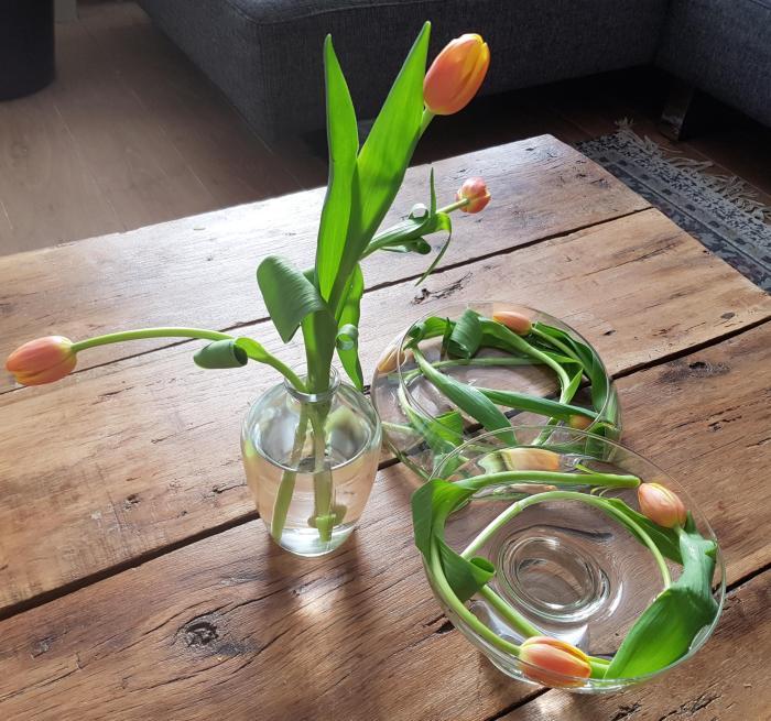 tulpen in een vaas